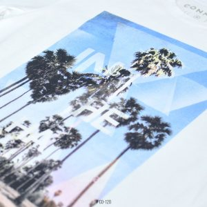 <b>Palm Coast Graphic T-Shirt </b> <br>CO-120 | White